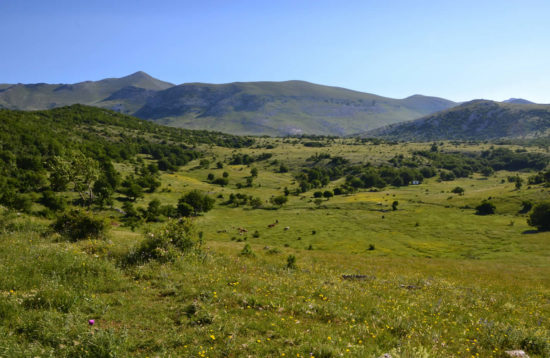 Hiking Tours - Dalmatia, Croatia 7